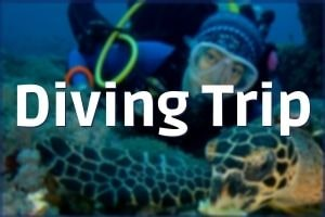 Javascuba Diving Trip